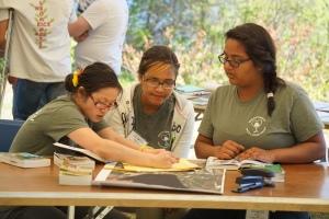 Students from the Brockton High School/Wildlands Trust team assess wildlife habitat using an aerial photo.